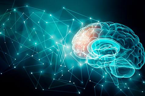 Scuola di psicoterapia SPAD - neuroscienze